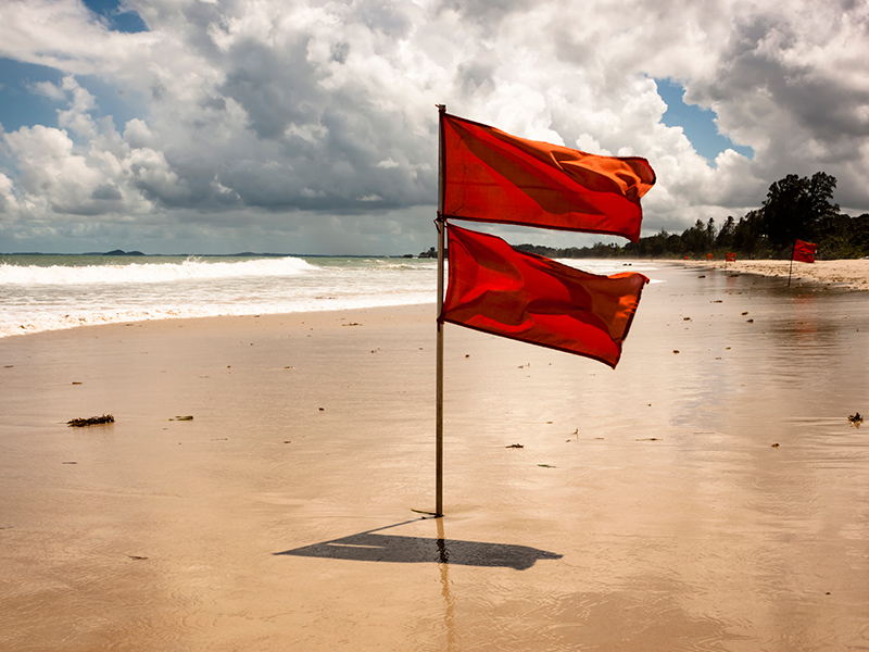 Picture of Red Flags | What Are The Dangers of Ignoring Hearing Loss