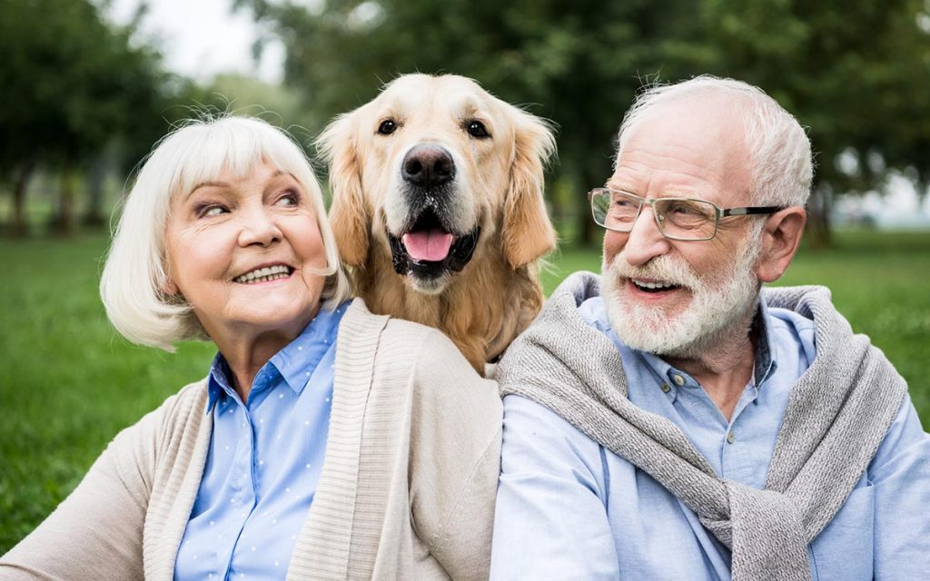 Smiling senior couple looking at adorable dog while resting in park. Happy Seniors wearing hearing aids.